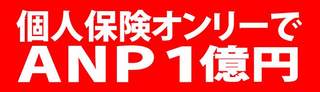 個人保険オンリーでANP1億円